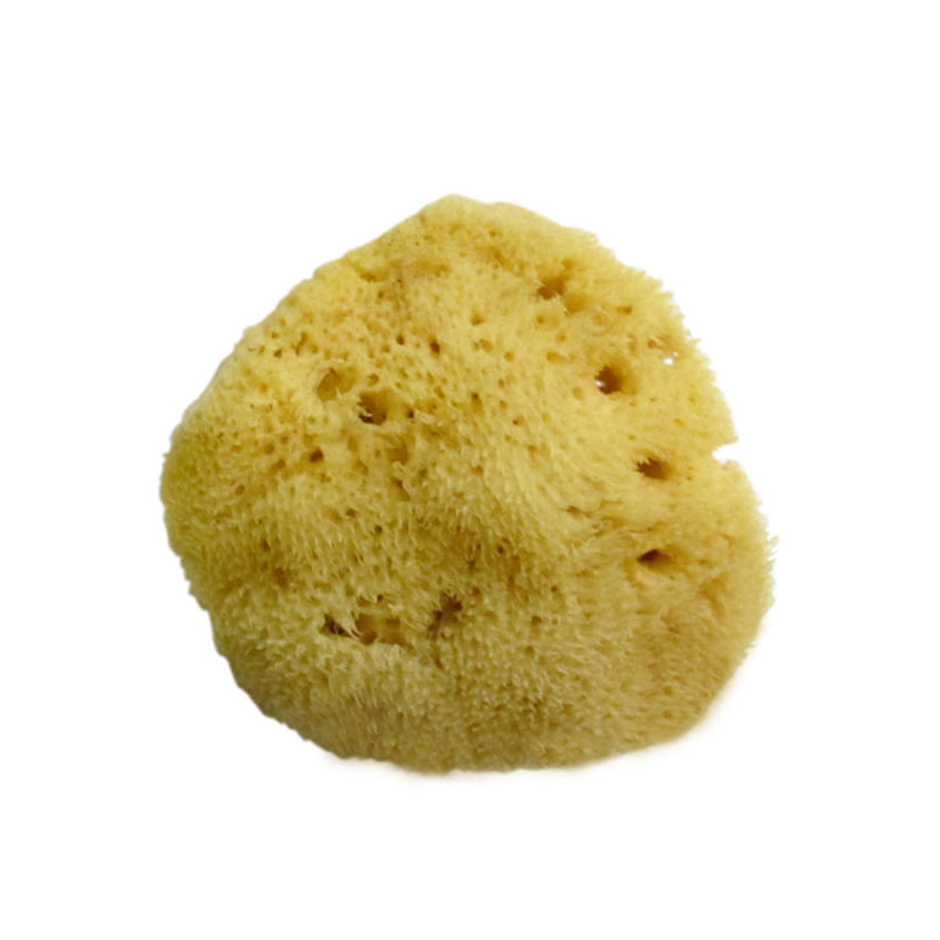 Silk Natural Sea Sponge (Small)